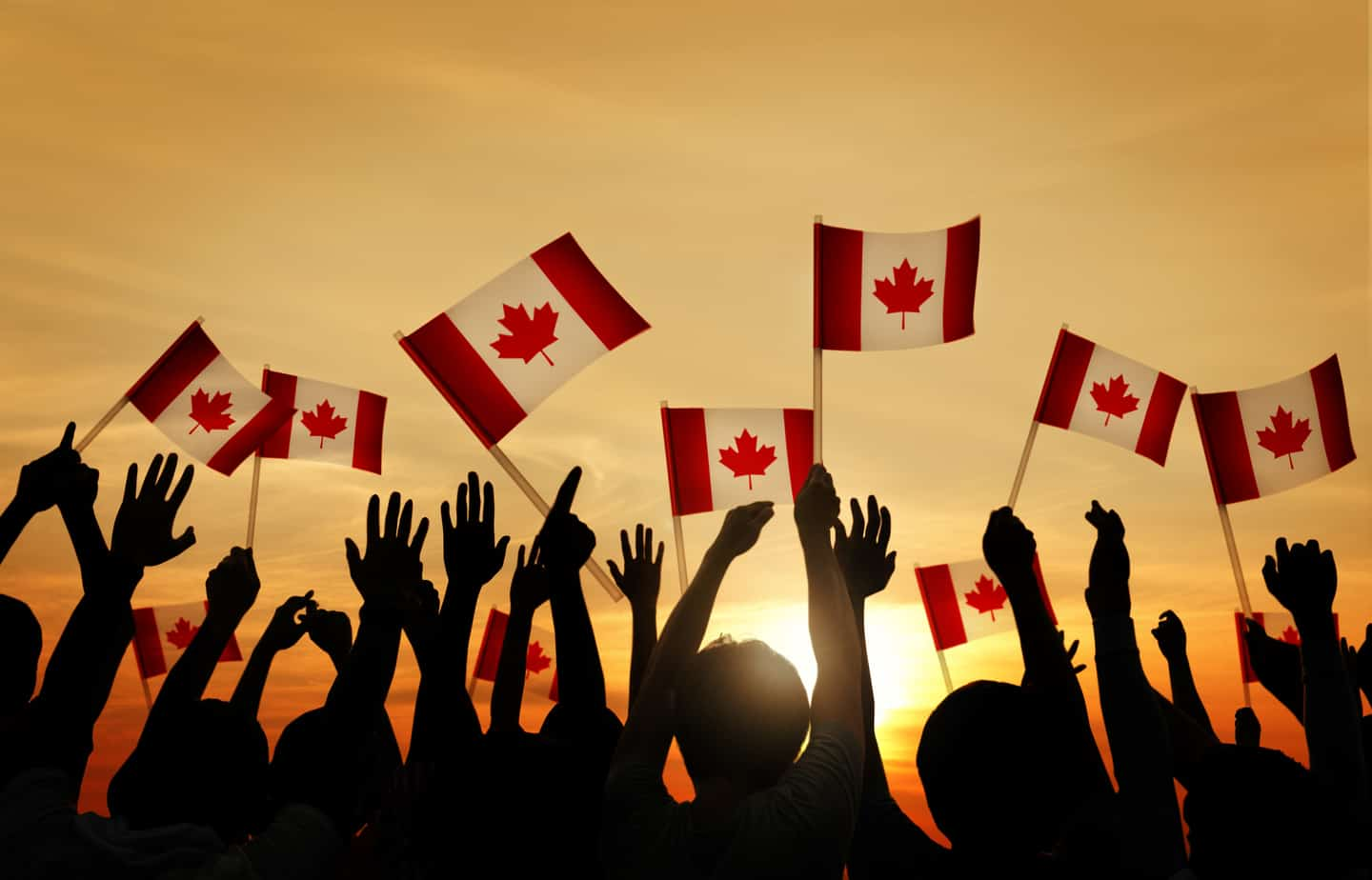 Group of People Waving the Flag of Canada